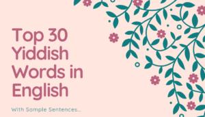 Yiddish Words in English